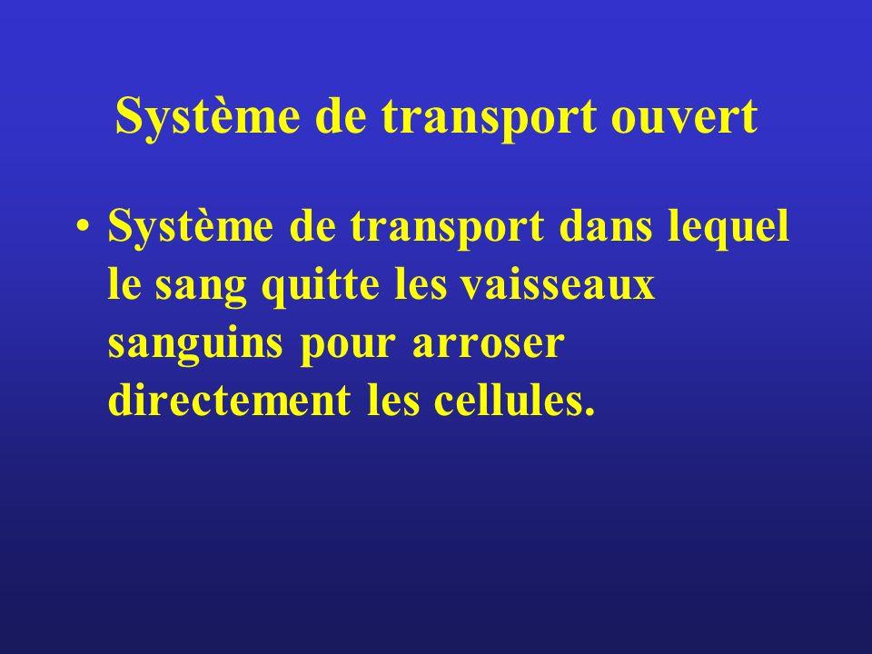 Système de transport ouvert Système de transport dans lequel le sang quitte les vaisseaux sanguins pour arroser directement les cellules.