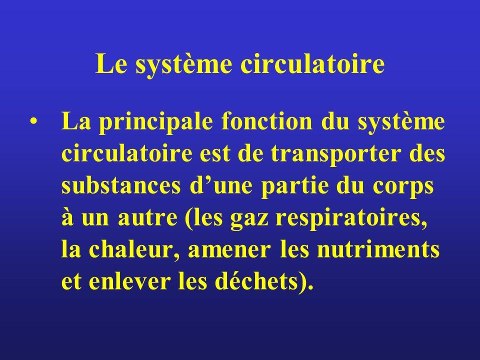 Le système circulatoire La principale fonction du système circulatoire est de transporter des substances dune partie du corps à un autre (les gaz resp