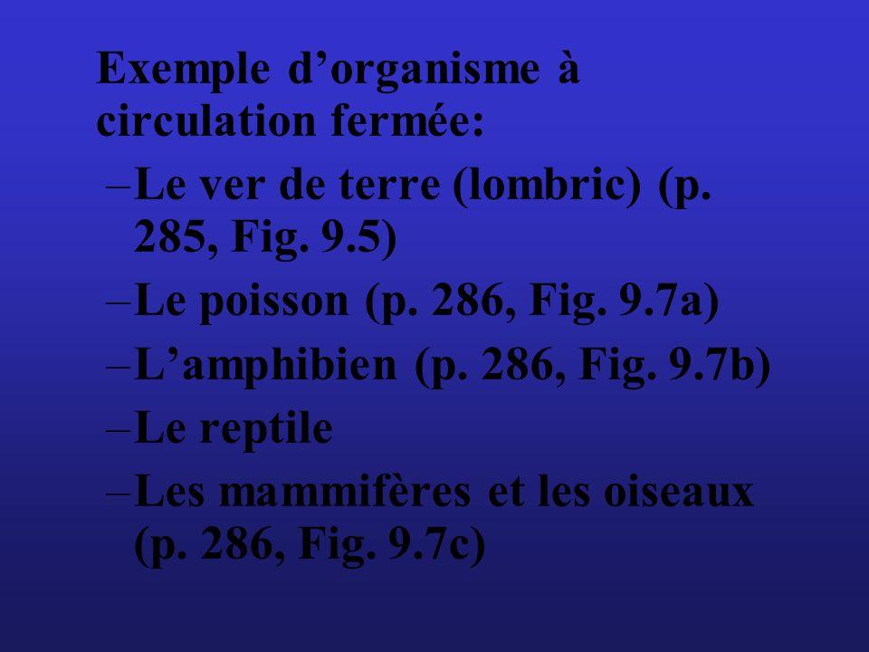 Exemple dorganisme à circulation fermée: –Le ver de terre (lombric) (p. 285, Fig. 9.5) –Le poisson (p. 286, Fig. 9.7a) –Lamphibien (p. 286, Fig. 9.7b)