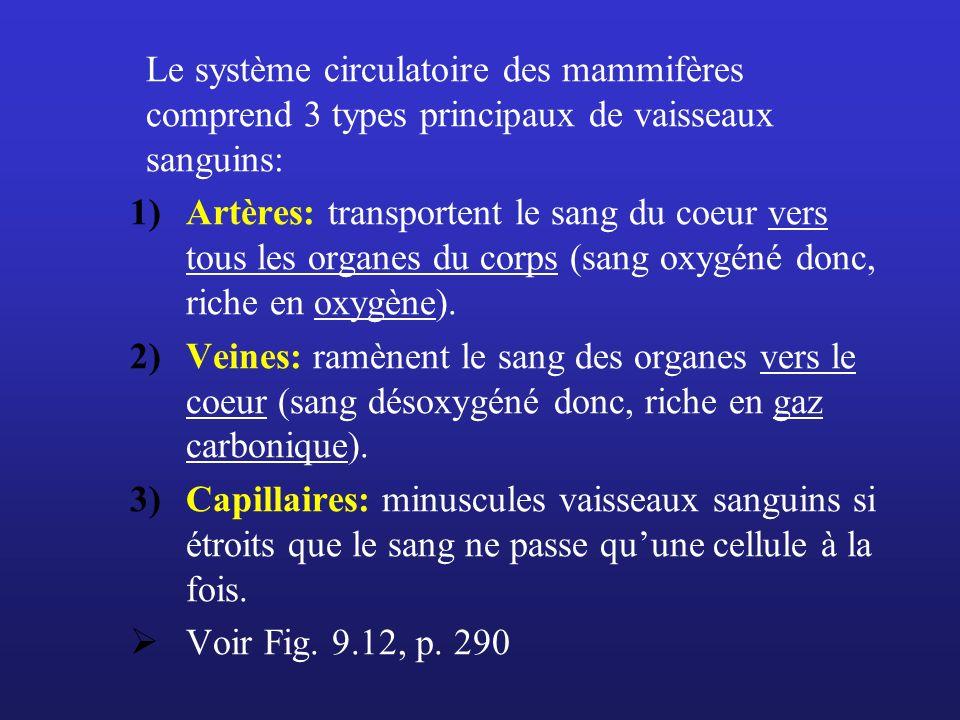 Le système circulatoire des mammifères comprend 3 types principaux de vaisseaux sanguins: 1)Artères: transportent le sang du coeur vers tous les organ