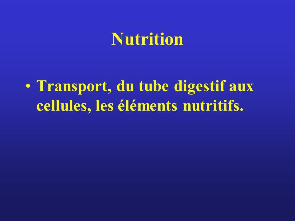 Nutrition Transport, du tube digestif aux cellules, les éléments nutritifs.