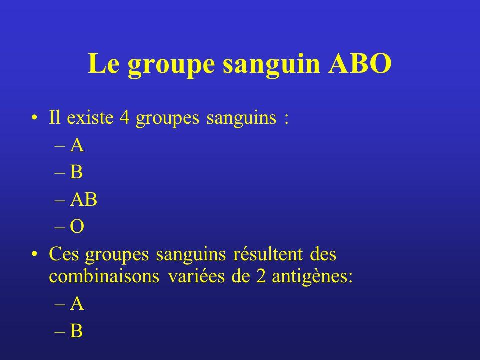Le groupe sanguin ABO Il existe 4 groupes sanguins : –A –B –AB –O Ces groupes sanguins résultent des combinaisons variées de 2 antigènes: –A –B
