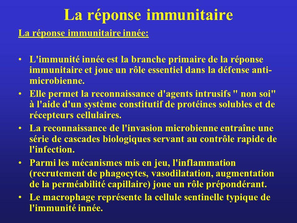 La réponse immunitaire La réponse immunitaire innée: L'immunité innée est la branche primaire de la réponse immunitaire et joue un rôle essentiel dans