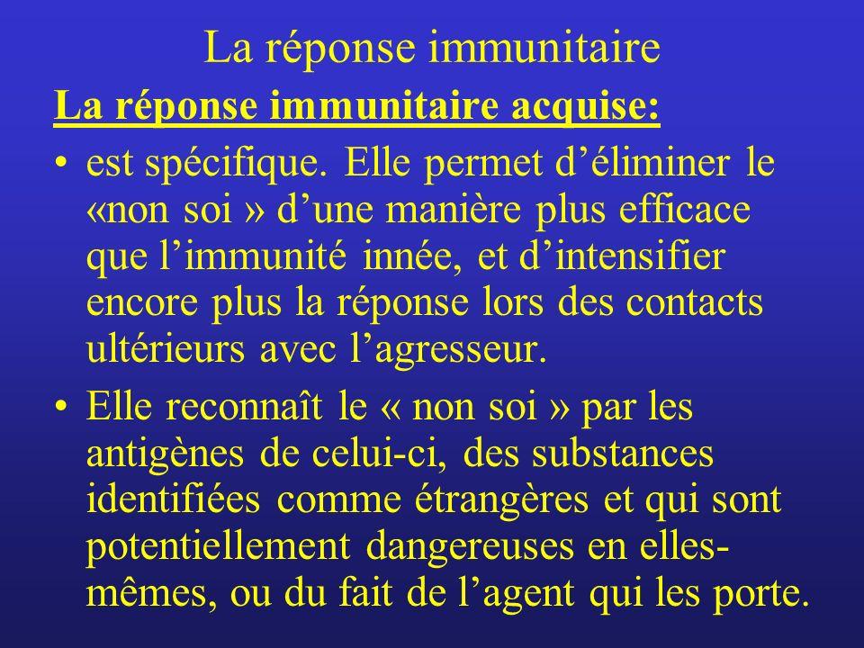 La réponse immunitaire La réponse immunitaire acquise: est spécifique. Elle permet déliminer le «non soi » dune manière plus efficace que limmunité in