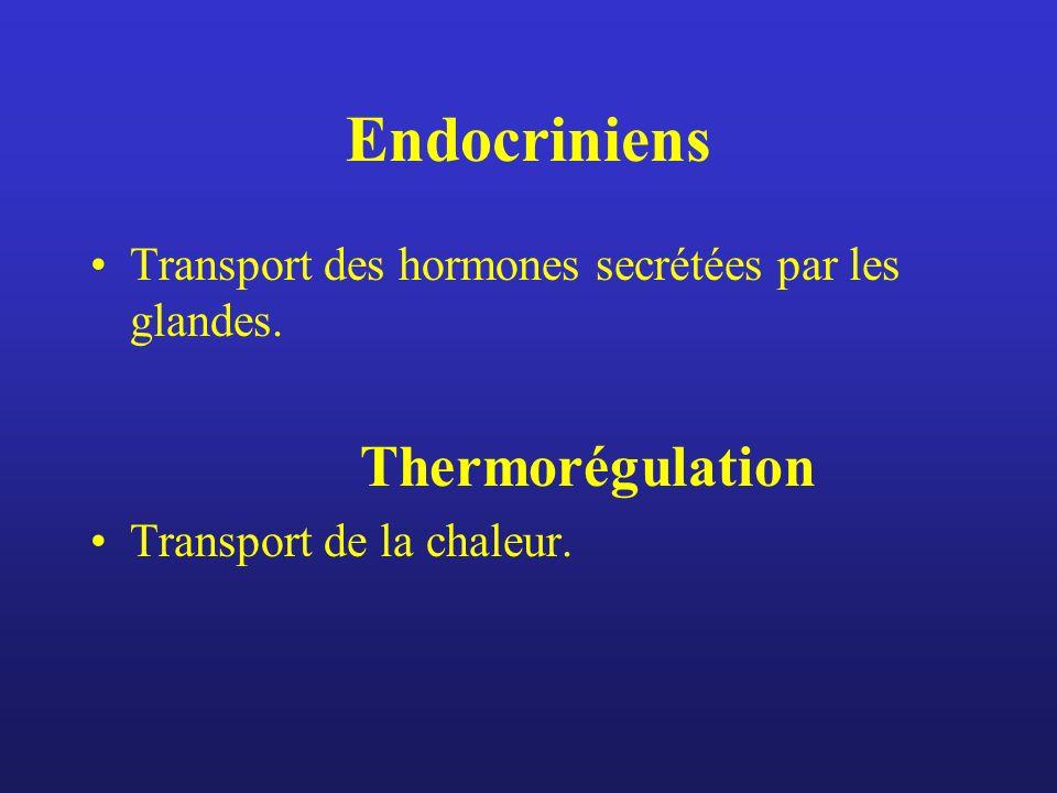 Endocriniens Transport des hormones secrétées par les glandes. Thermorégulation Transport de la chaleur.
