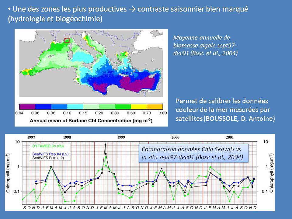 Une des zones les plus productives contraste saisonnier bien marqué (hydrologie et biogéochimie) Moyenne annuelle de biomasse algale sept97- dec01 (Bo