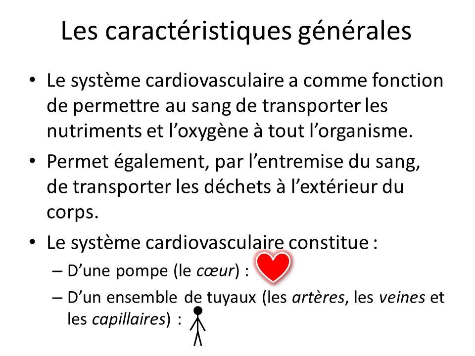 Les caractéristiques générales Le système cardiovasculaire a comme fonction de permettre au sang de transporter les nutriments et loxygène à tout lorg