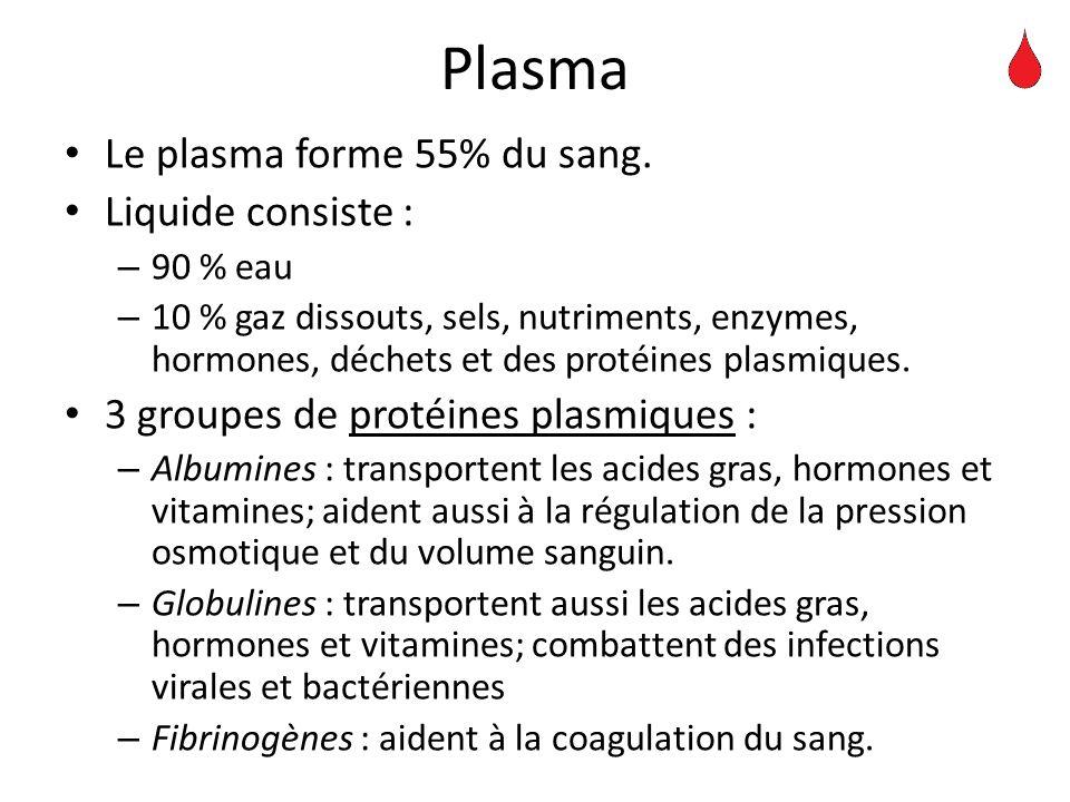 Plasma Le plasma forme 55% du sang. Liquide consiste : – 90 % eau – 10 % gaz dissouts, sels, nutriments, enzymes, hormones, déchets et des protéines p