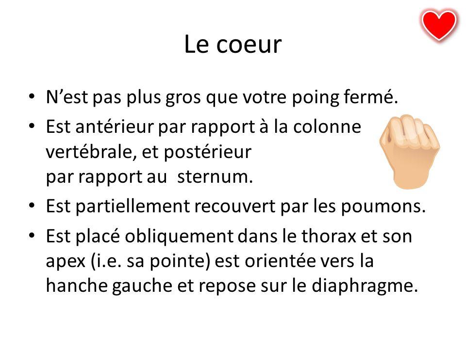 Coagulation (blood clotting)