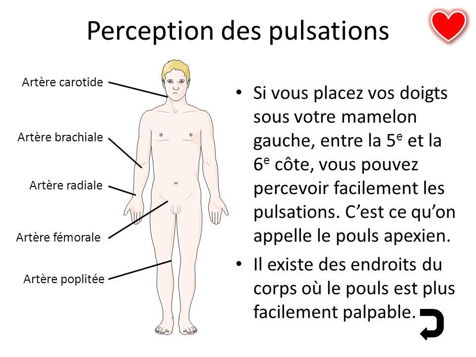 Perception des pulsations Si vous placez vos doigts sous votre mamelon gauche, entre la 5 e et la 6 e côte, vous pouvez percevoir facilement les pulsa