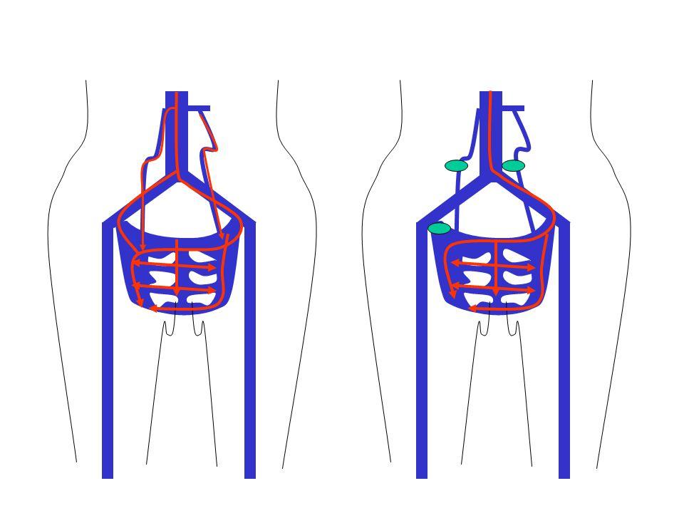 Ces modifications peuvent aussi aboutir à lactivation rétrograde danastomoses ( points de fuite) avec les réseaux veineux superficiels des membres inférieurs qui peuvent se résoudre ou persister en post-partum..