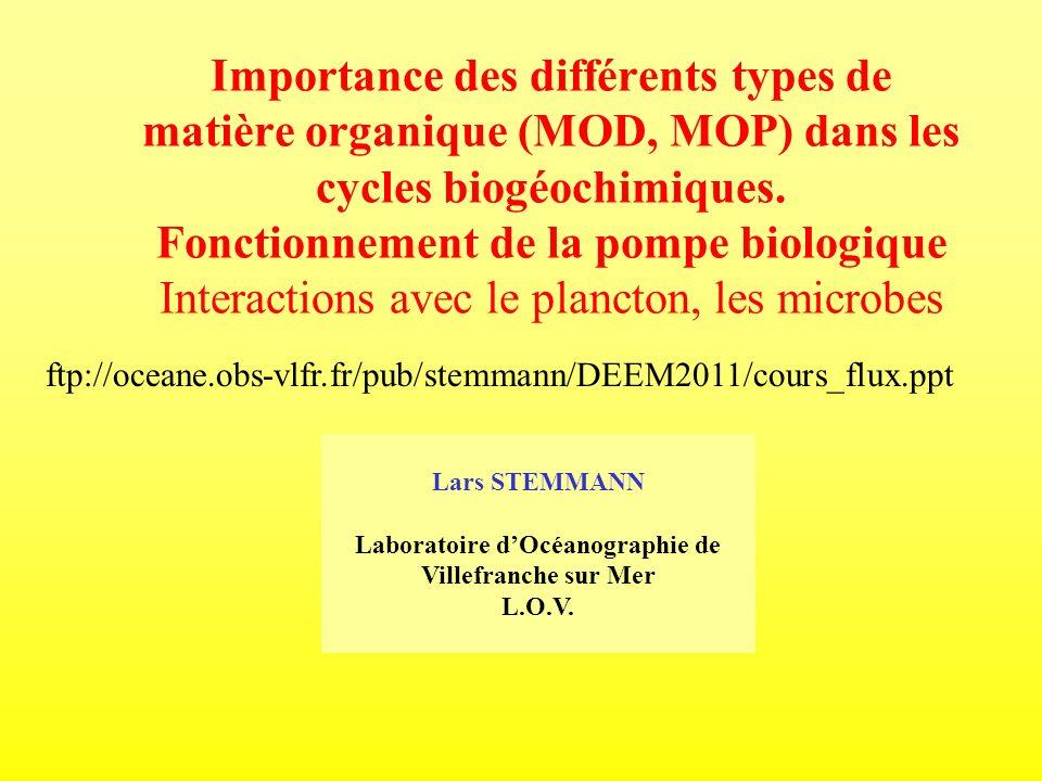 Lars STEMMANN Laboratoire dOcéanographie de Villefranche sur Mer L.O.V. Importance des différents types de matière organique (MOD, MOP) dans les cycle