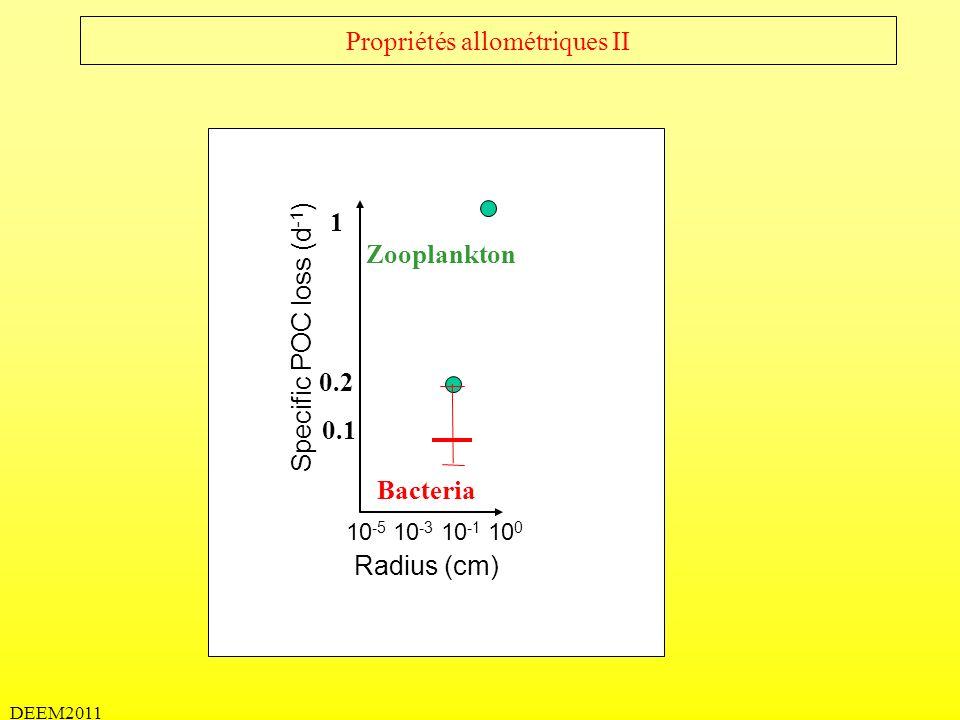 DEEM2011 Propriétés allométriques II Specific POC loss (d -1 ) 0.1 Radius (cm) 10 -5 10 -3 10 -1 10 0 0.2 1 Bacteria Zooplankton