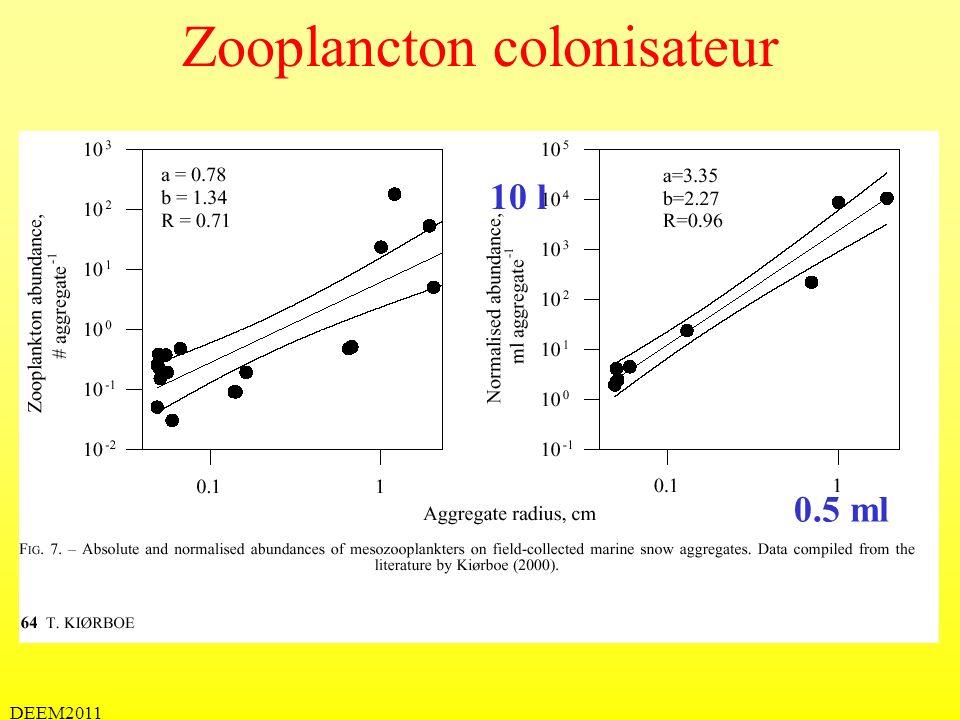 DEEM2011 Zooplancton colonisateur 0.5 ml 10 l