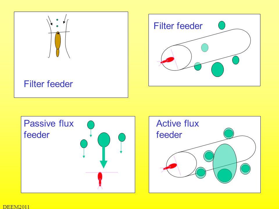 DEEM2011 Filter feeder Active flux feeder Passive flux feeder Filter feeder