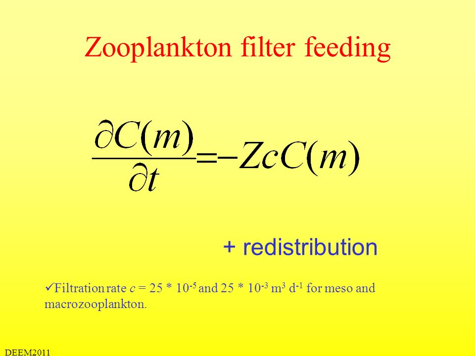 DEEM2011 Zooplankton filter feeding + redistribution Filtration rate c = 25 * 10 -5 and 25 * 10 -3 m 3 d -1 for meso and macrozooplankton.