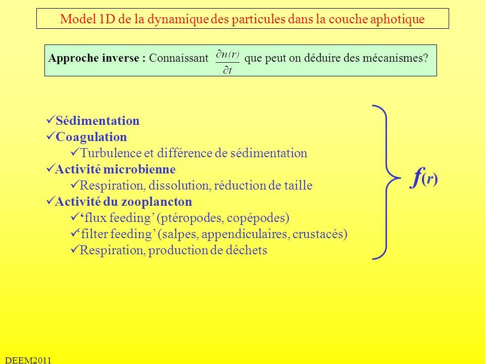 DEEM2011 Model 1D de la dynamique des particules dans la couche aphotique Sédimentation Coagulation Turbulence et différence de sédimentation Activité