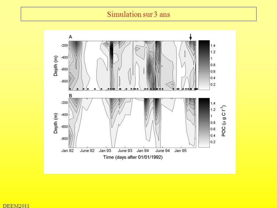 DEEM2011 Simulation sur 3 ans