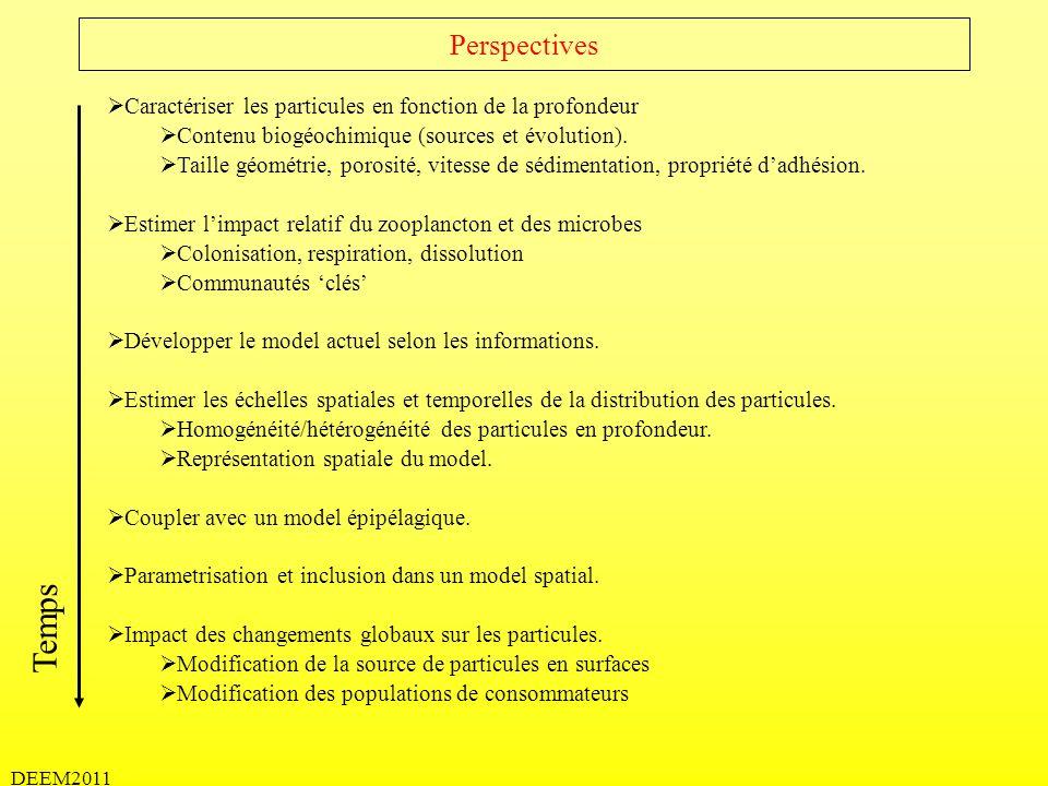 DEEM2011 Perspectives Caractériser les particules en fonction de la profondeur Contenu biogéochimique (sources et évolution). Taille géométrie, porosi
