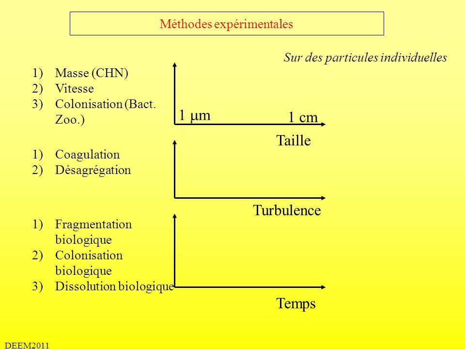 DEEM2011 Méthodes expérimentales Sur des particules individuelles Taille 1)Masse (CHN) 2)Vitesse 3)Colonisation (Bact. Zoo.) 1)Coagulation 2)Désagréga