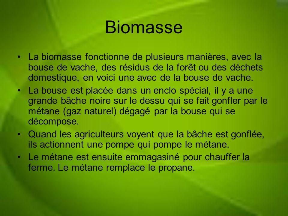 Biomasse La biomasse fonctionne de plusieurs manières, avec la bouse de vache, des résidus de la forêt ou des déchets domestique, en voici une avec de