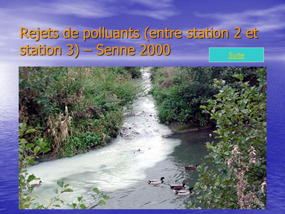 Rejets de polluants (entre station 2 et station 3) – Senne 2000 Suite