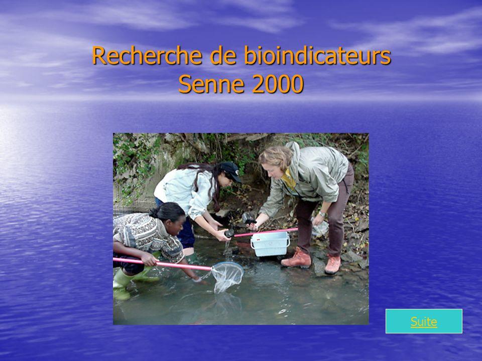 Recherche de bioindicateurs Senne 2000 Suite