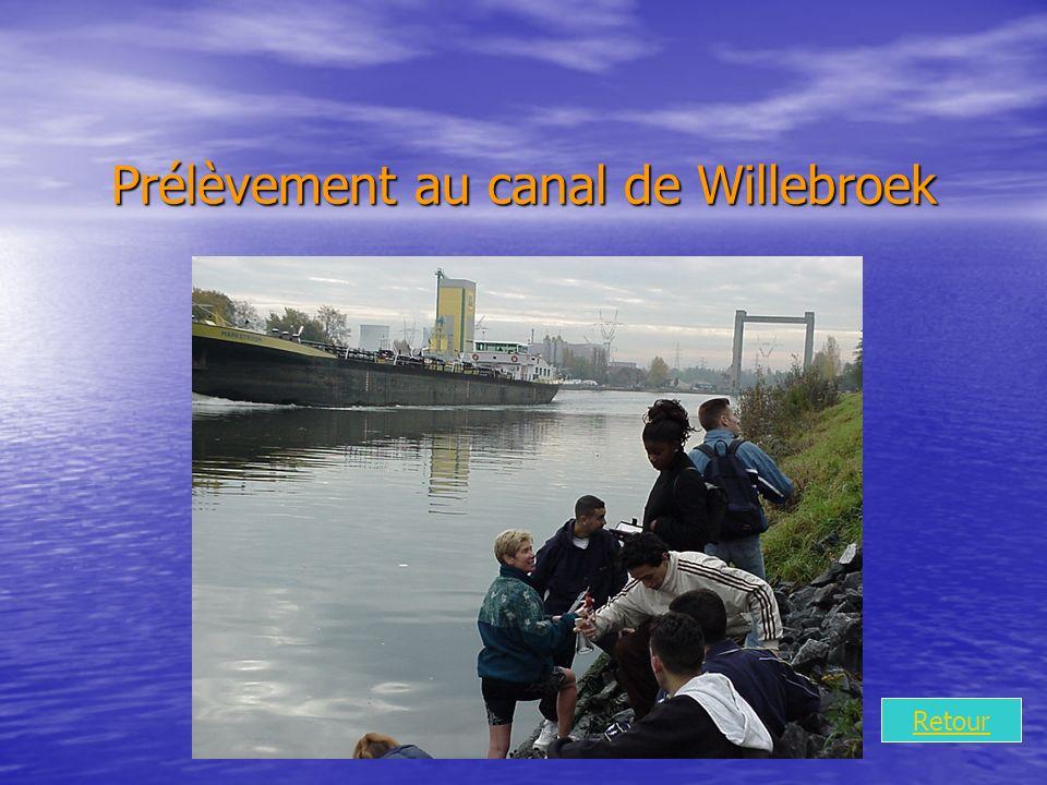 Prélèvement au canal de Willebroek Retour