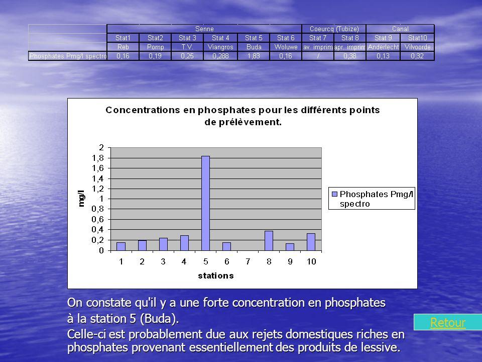 On constate qu il y a une forte concentration en phosphates à la station 5 (Buda).