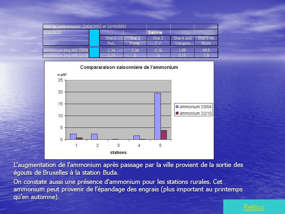 L augmentation de l ammonium après passage par la ville provient de la sortie des égouts de Bruxelles à la station Buda.
