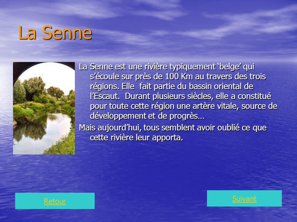 Il y a plus de 1000 ans, la Senne était une rivière grâcieuse, formant de nombreux méandres et îlots, très poissonneuse et où fleurissait abondamment liris jaune, symbole de la Région de Bruxelles Capitale.