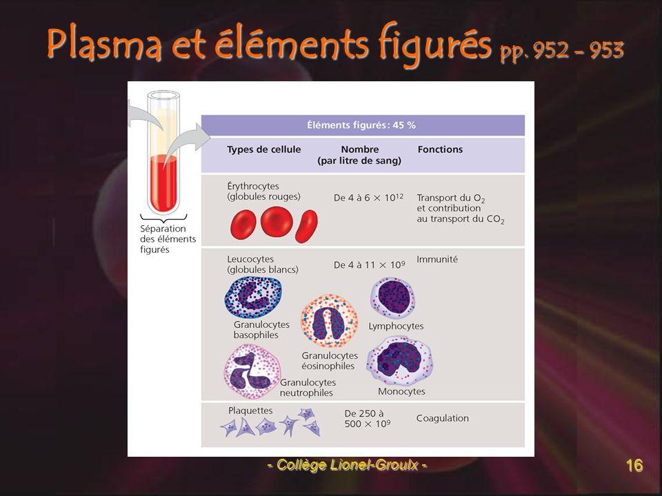 17 Système respiratoire pp. 961 - 963 - Collège Lionel-Groulx -
