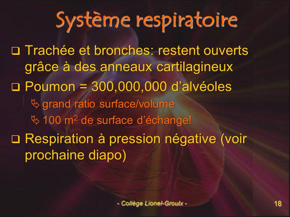 Respiration à pression négative pp. 962-963 19 - Collège Lionel-Groulx -