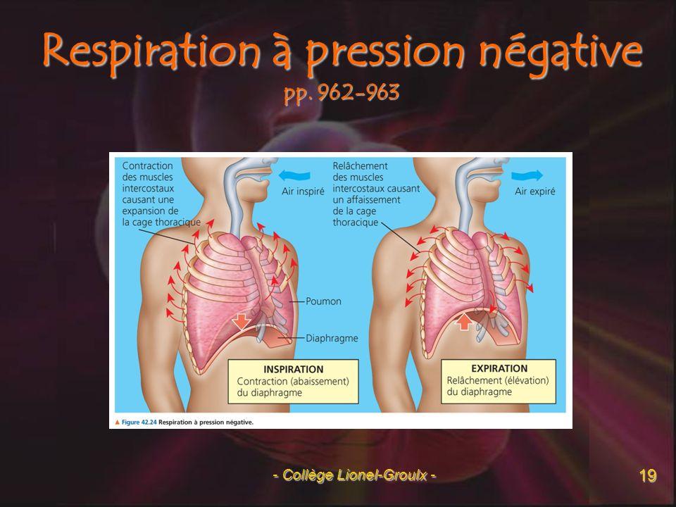 Lors de lexercice, quelle est la « cible » de loxygène en provenance des poumons et du glucose en provenance de lintestin.