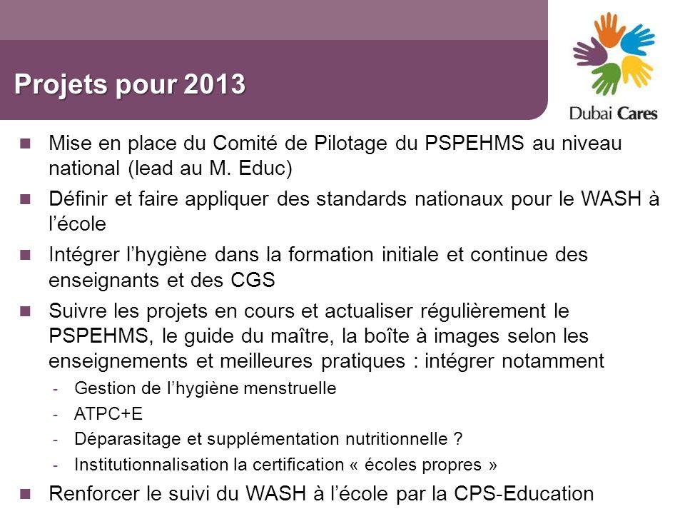 Projets pour 2013 Mise en place du Comité de Pilotage du PSPEHMS au niveau national (lead au M. Educ) Définir et faire appliquer des standards nationa