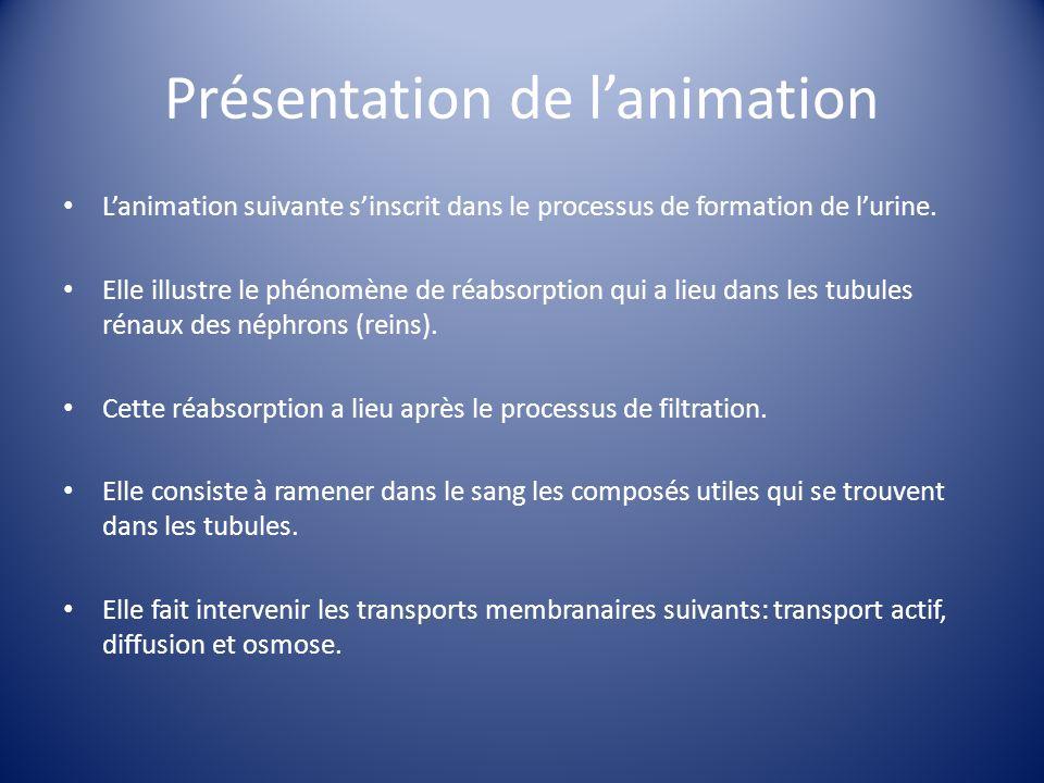 Objectifs pédagogiques Structurer linformation en divisant la réabsorption en petites étapes.