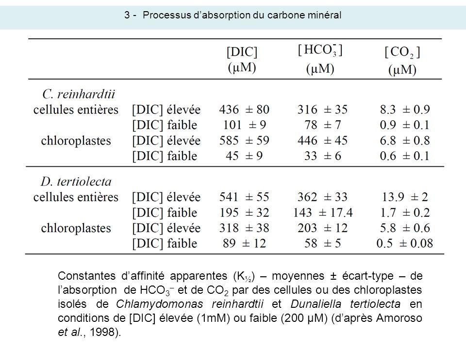 3 -Processus dabsorption du carbone minéral Constantes daffinité apparentes (K ½ ) – moyennes ± écart-type – de labsorption de HCO 3 – et de CO 2 par