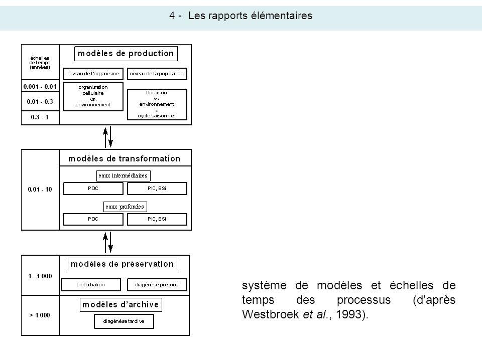 4 -Les rapports élémentaires système de modèles et échelles de temps des processus (d'après Westbroek et al., 1993).