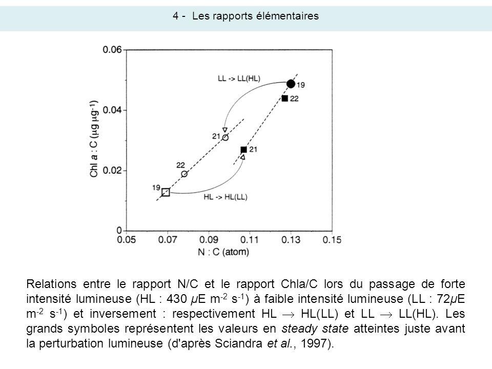 Relations entre le rapport N/C et le rapport Chla/C lors du passage de forte intensité lumineuse (HL : 430 µE m -2 s -1 ) à faible intensité lumineuse