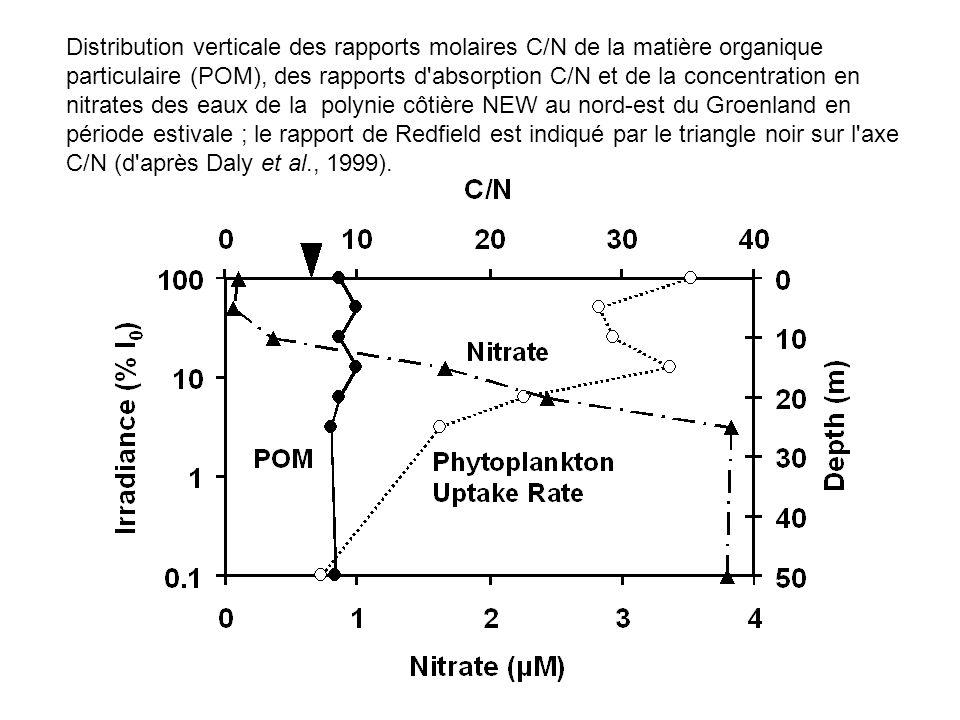 Distribution verticale des rapports molaires C/N de la matière organique particulaire (POM), des rapports d'absorption C/N et de la concentration en n