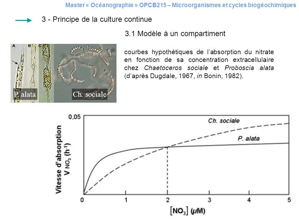 Master « Océanographie » OPCB215 – Microorganismes et cycles biogéochimiques courbes hypothétiques de labsorption du nitrate en fonction de sa concent