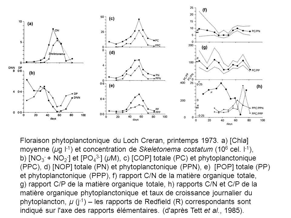 Floraison phytoplanctonique du Loch Creran, printemps 1973. a) [Chla] moyenne (µg l -1 ) et concentration de Skeletonema costatum (10 6 cel. l -1 ), b