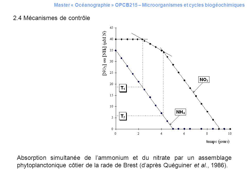 Master « Océanographie » OPCB215 – Microorganismes et cycles biogéochimiques 2.4 Mécanismes de contrôle Absorption simultanée de lammonium et du nitra