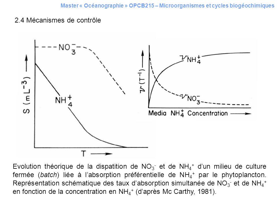 Master « Océanographie » OPCB215 – Microorganismes et cycles biogéochimiques 2.4 Mécanismes de contrôle Evolution théorique de la dispatition de NO 3