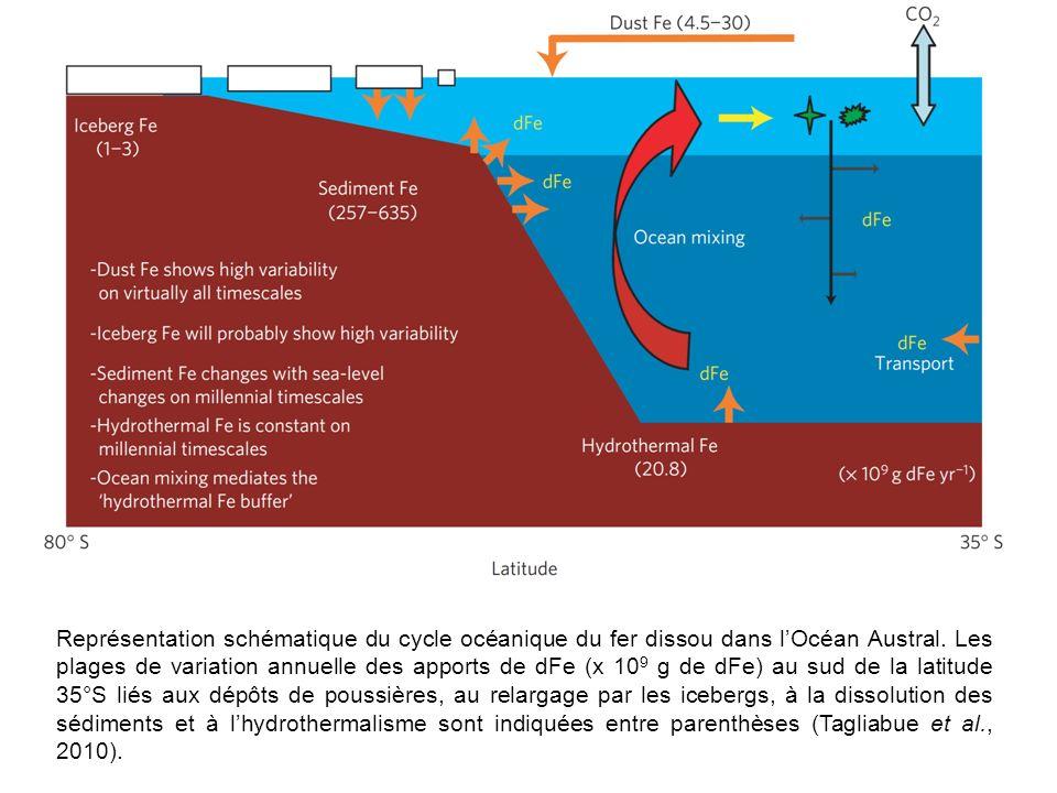 Représentation schématique du cycle océanique du fer dissou dans lOcéan Austral. Les plages de variation annuelle des apports de dFe (x 10 9 g de dFe)