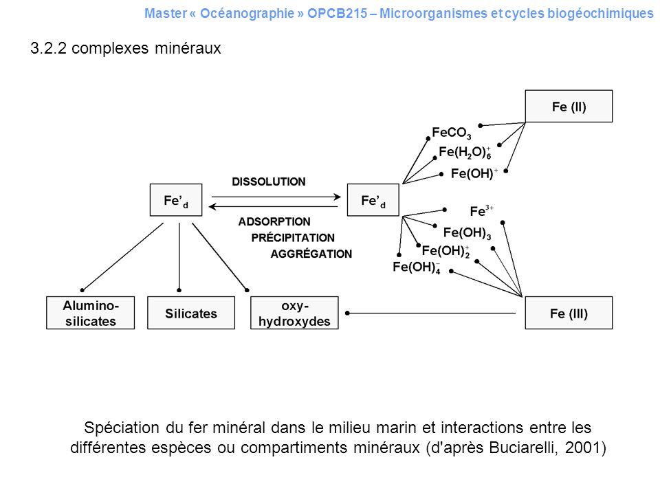 Master « Océanographie » OPCB215 – Microorganismes et cycles biogéochimiques 3.2.2 complexes minéraux Spéciation du fer minéral dans le milieu marin e