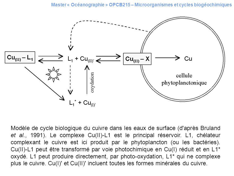 Master « Océanographie » OPCB215 – Microorganismes et cycles biogéochimiques Modèle de cycle biologique du cuivre dans les eaux de surface (d'après Br
