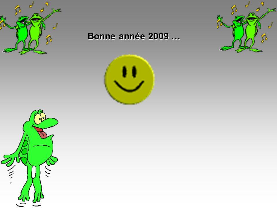 Bonne année 2009 …