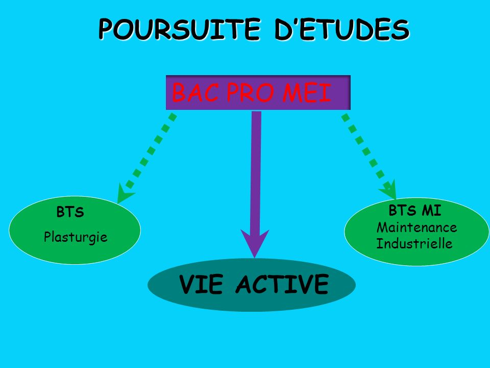POURSUITE DETUDES VIE ACTIVE BTS MI Maintenance Industrielle BAC PRO MEI BTS Plasturgie