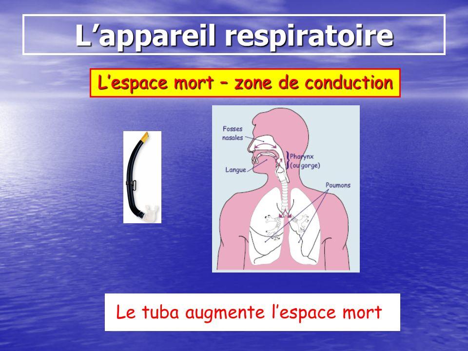 Lappareil respiratoire Lespace mort – zone de conduction Le tuba augmente lespace mort